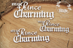 Believe in MAGIC - My prince Charming - napis